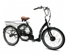 bakfietsonline_troy_easy_ride_driewieler_foto2_1